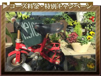 コース料金・特別キャンペーン